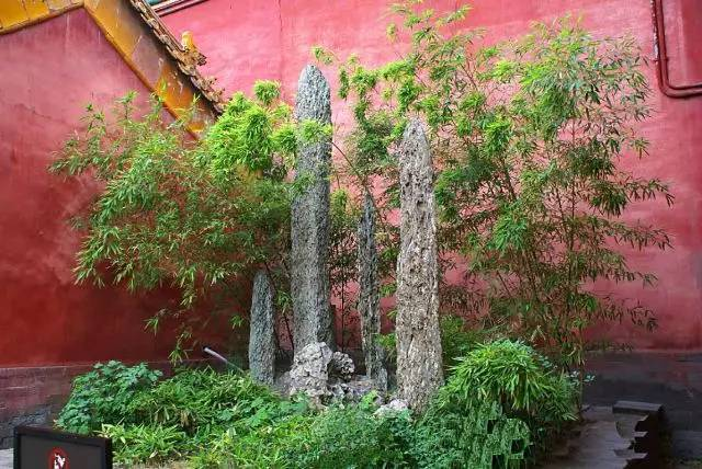 常山十大名石2丨石笋石:在御花园与郑板桥结下不解之缘