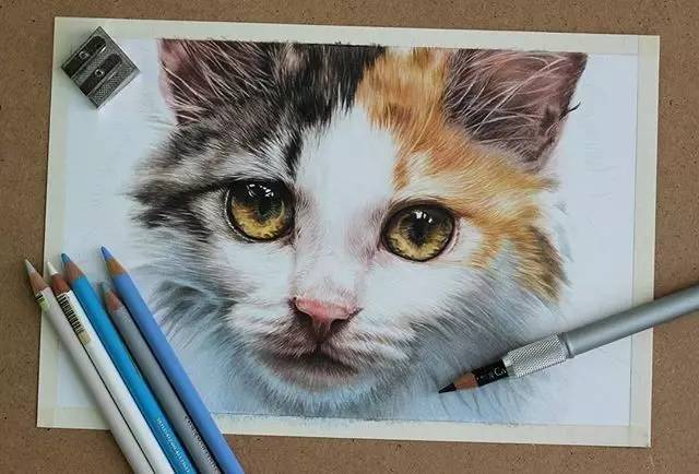 宠物 正文  把内心对动物的深深喜爱 化在手指尖 留存在画纸上 用彩铅