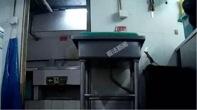 海底捞美味又干净?老鼠爬进食品柜,火锅漏勺掏下水道……想想都觉得恶心!