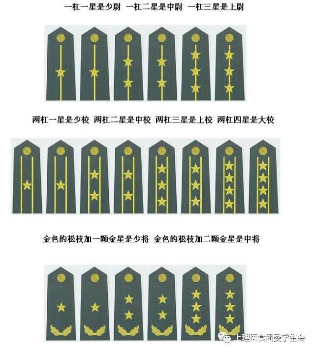 警察肩章矢量图