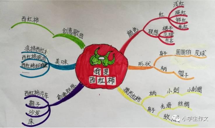 根据动物特点编童话  课程报名方式 淘宝报名:【秋季课程】思维导图