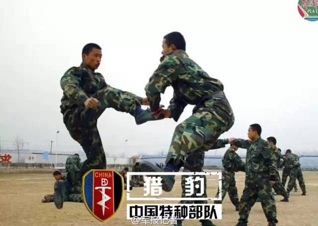 4西南猎鹰和猎豹(成都军区的特种部队)