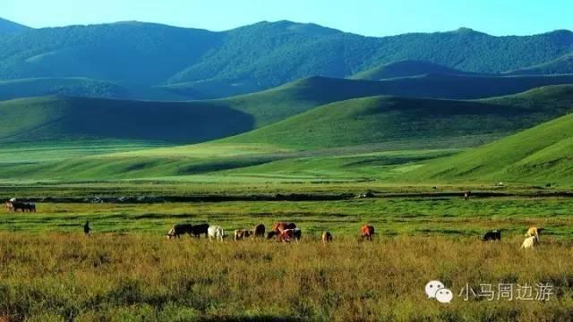 出发丨丰宁坝上草原,消暑度假 醉美闪电湖,草原骑马,篝火 烤全羊
