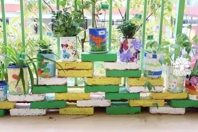 奶粉罐等,将它们涂上好看的颜色,就变成了很好看的植物花盆,环保又