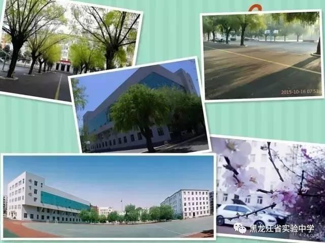 黑龙江省实验中学 关于这所省重点你知道多少图片