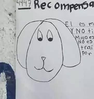 为了寻找走失的小狗,女孩画了幅超简陋的简笔画,意外地发生了奇迹