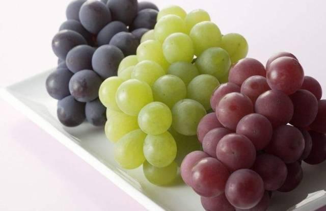秋天吃葡萄,功效堪比冬虫夏草,新郑人你知道吗?