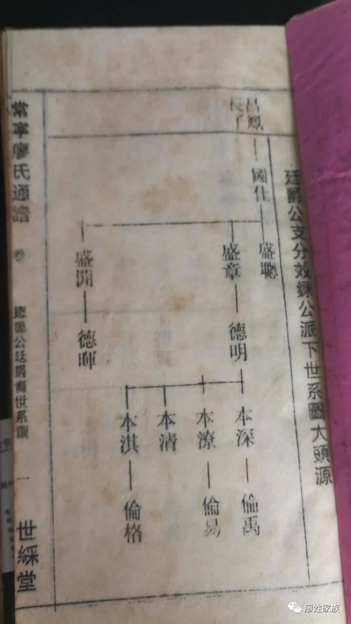 南常宁市西岭镇廖氏族谱图片
