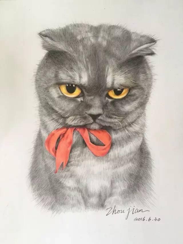 学员笔下的彩铅动物画,有没有萌到你?