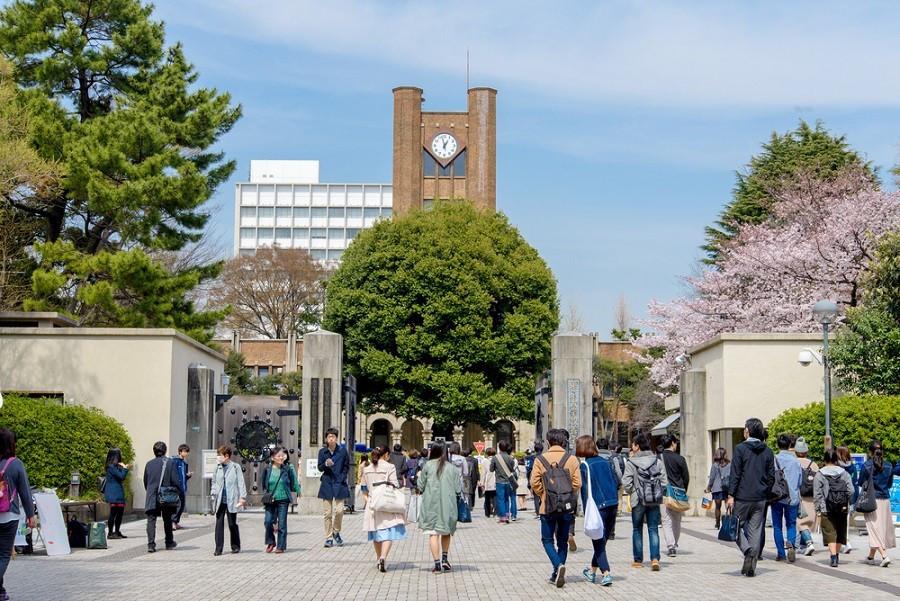 特殊学制:research student!日本研究生画风有些不同