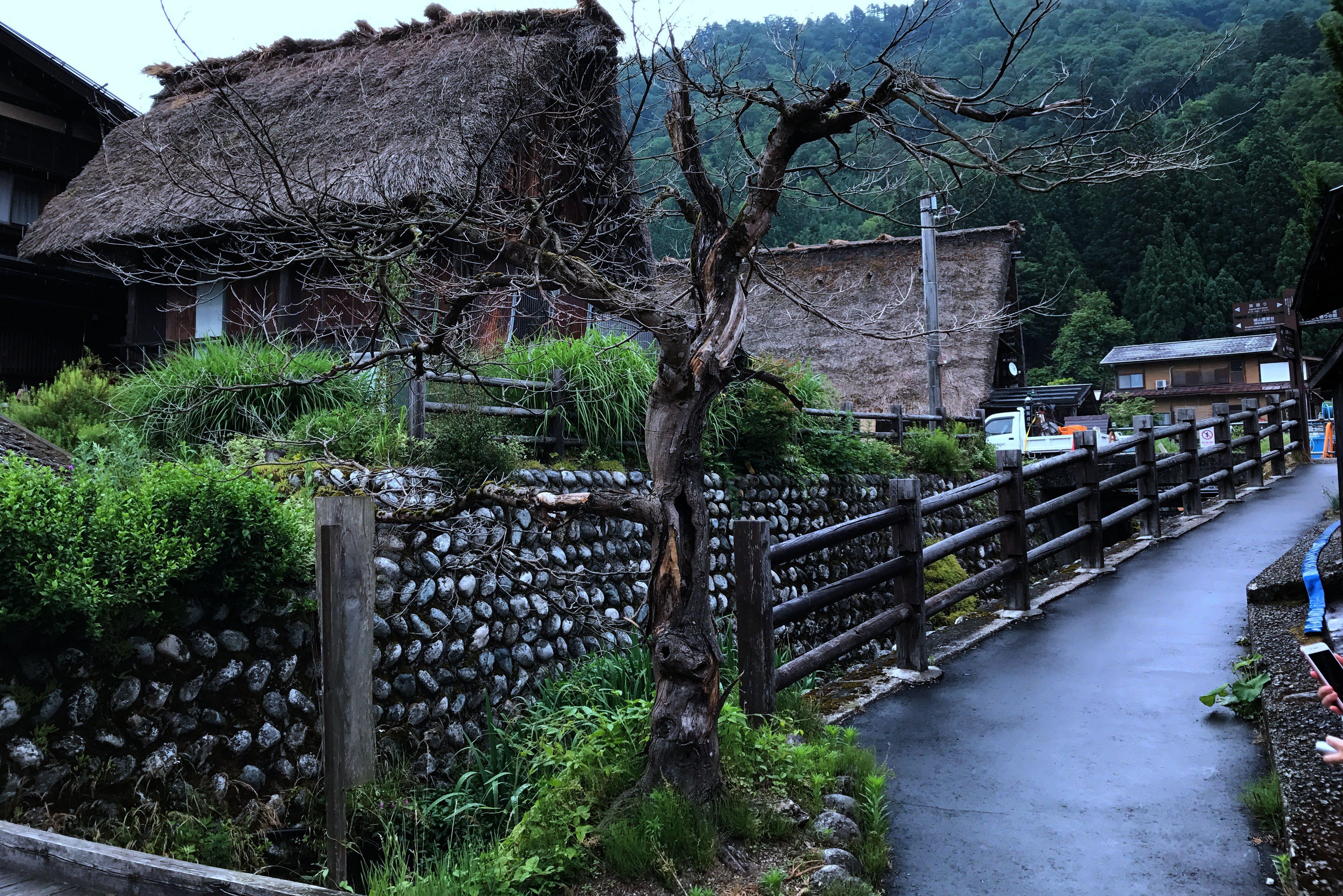 日本:白川合掌村,家家草屋开门见山 - 龙眼 - 龙之血脉