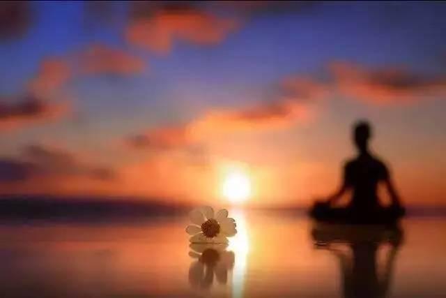 每日一禅:不要把软弱当作善良//你的心所朝的方向就是你未来人生的路 - 清 雅 - 清     雅博客