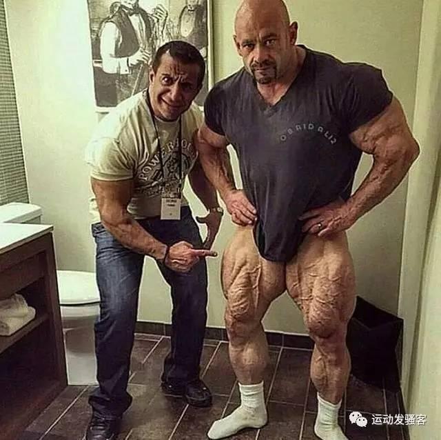 不要只会练上身了,下盘稳定才是真男人,教你塑造完美腿部(图文)