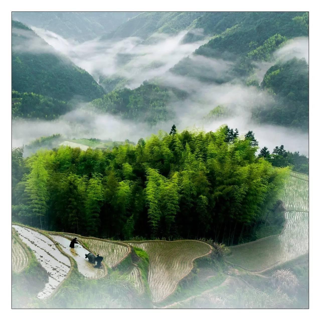 青山��9��ykd_青山秀水,田园风光……这个中国最美乡愁目的地等你一