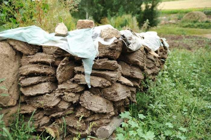 内蒙景区边有个小村庄 村民住泥房子 靠养牲口作伴!