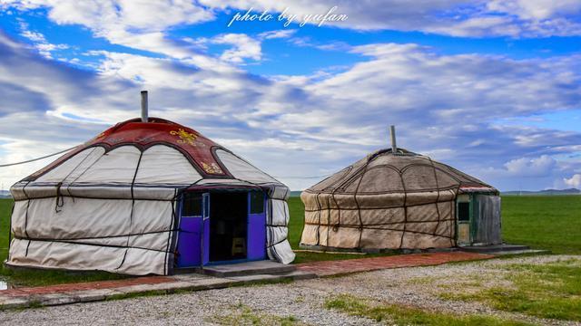 乌珠穆沁草原上的养牛人家,定居后相比游牧生活会怎么样呢?