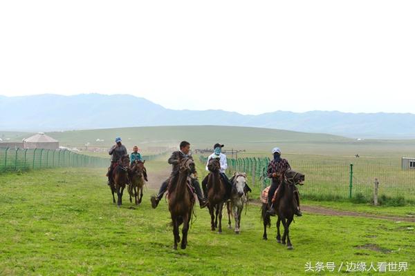 最重要的是骑术都很精,一旦有人召唤,有客人想骑马看草原,立即从四周