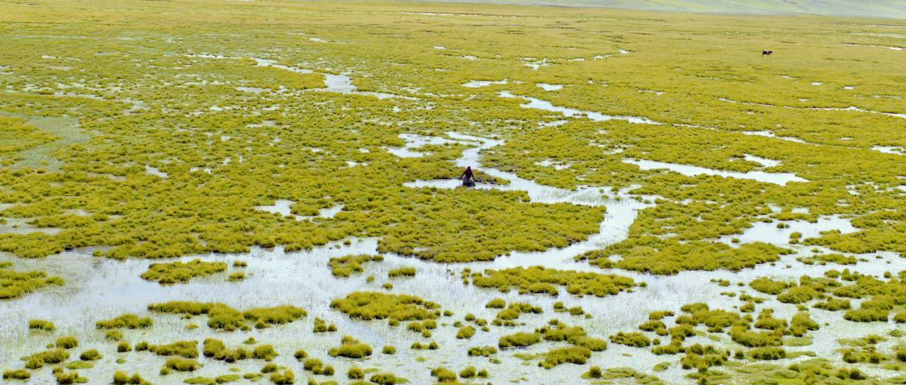 全世界都有一个西藏梦,这片雪域高原还能火多久?