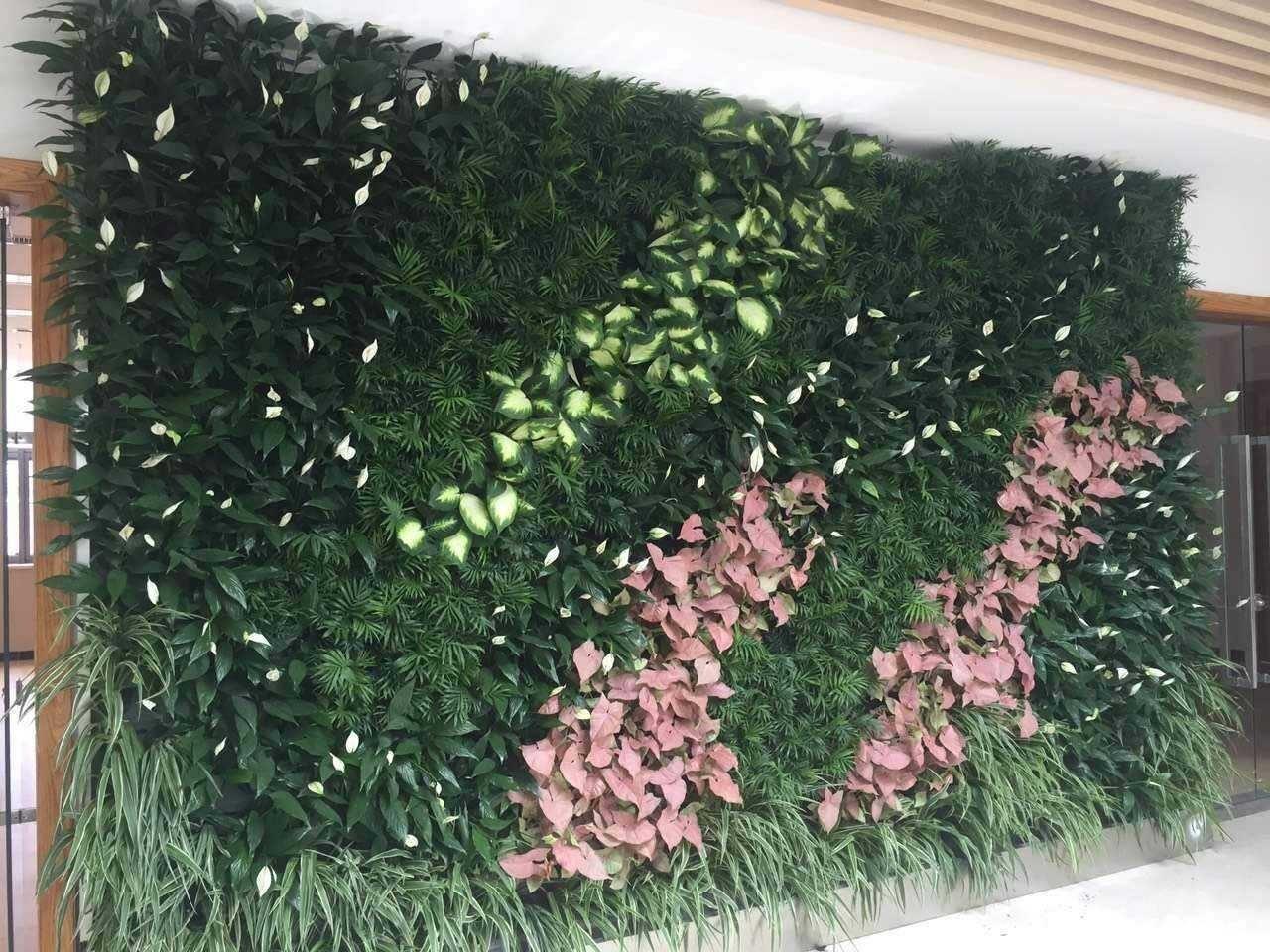 花墙 景观 墙 植物 1280_960