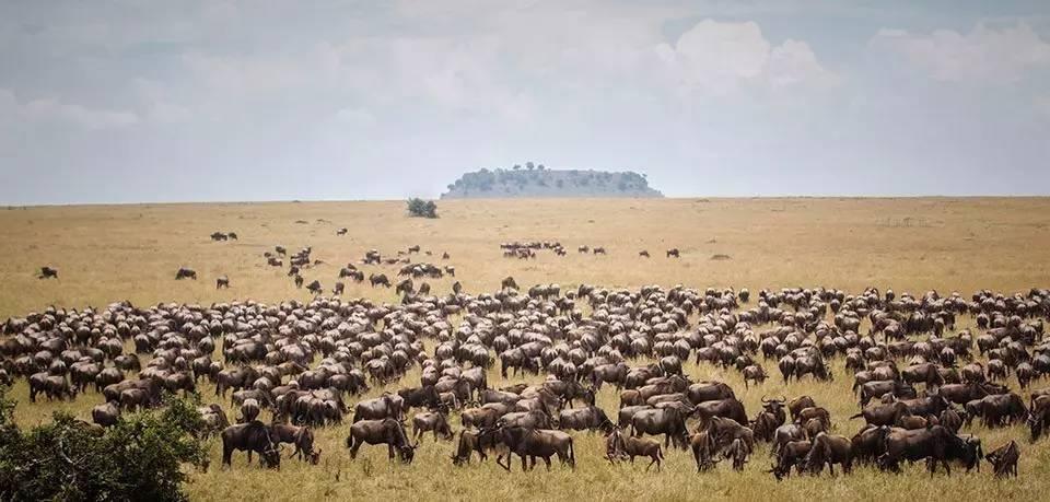 肯尼亚和坦桑尼亚飞行穿越13日