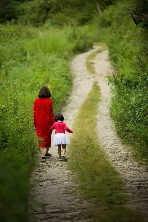 每日一禅:不要怪父母 - 清 雅 - 清     雅博客