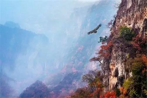北京周边自驾游,就去这些人少,景美的地方。