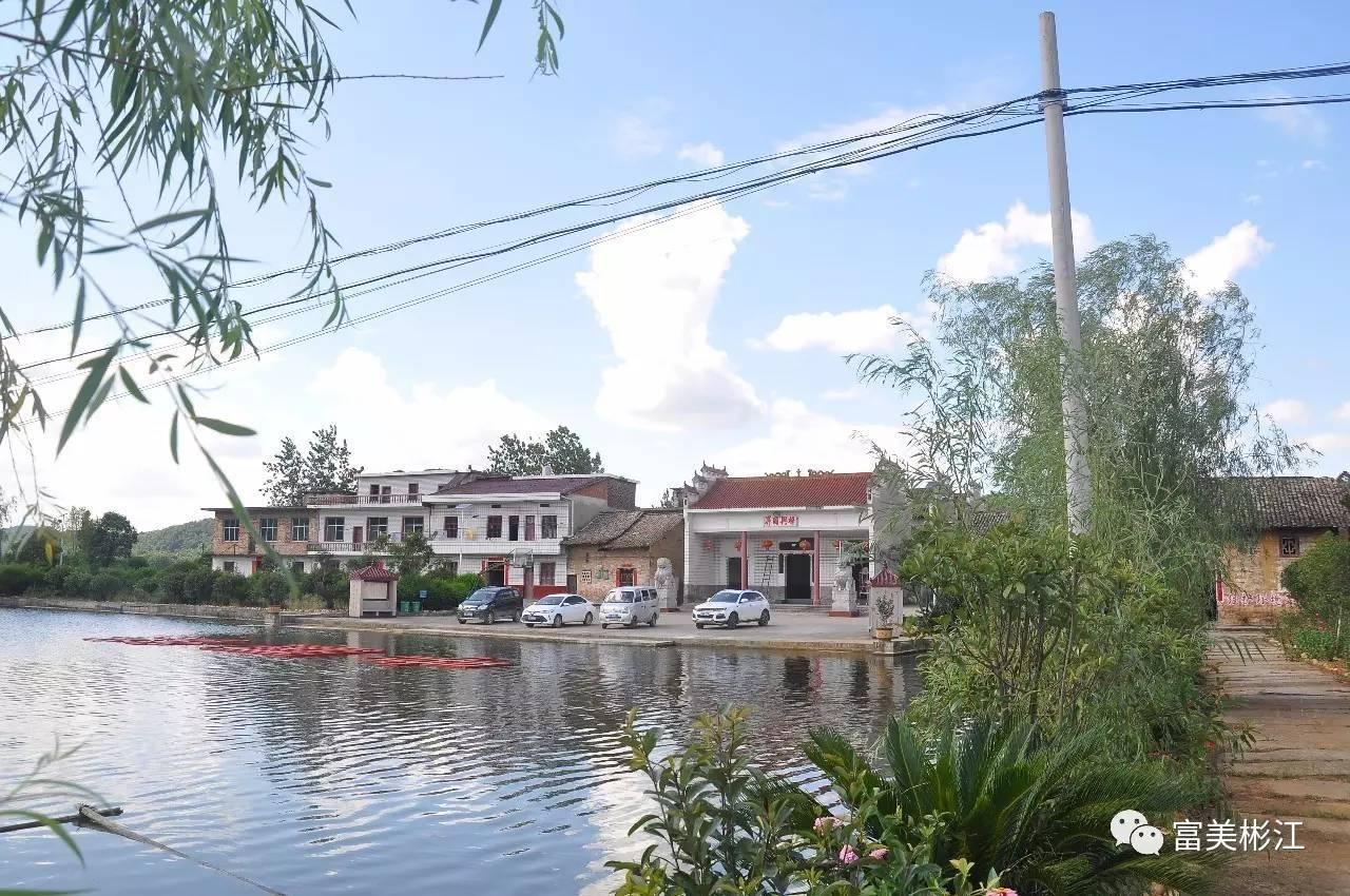 大水塘,太阳能灯,洁净整齐的排水沟,旧民居,新别墅,花园,菜园,果园,古图片