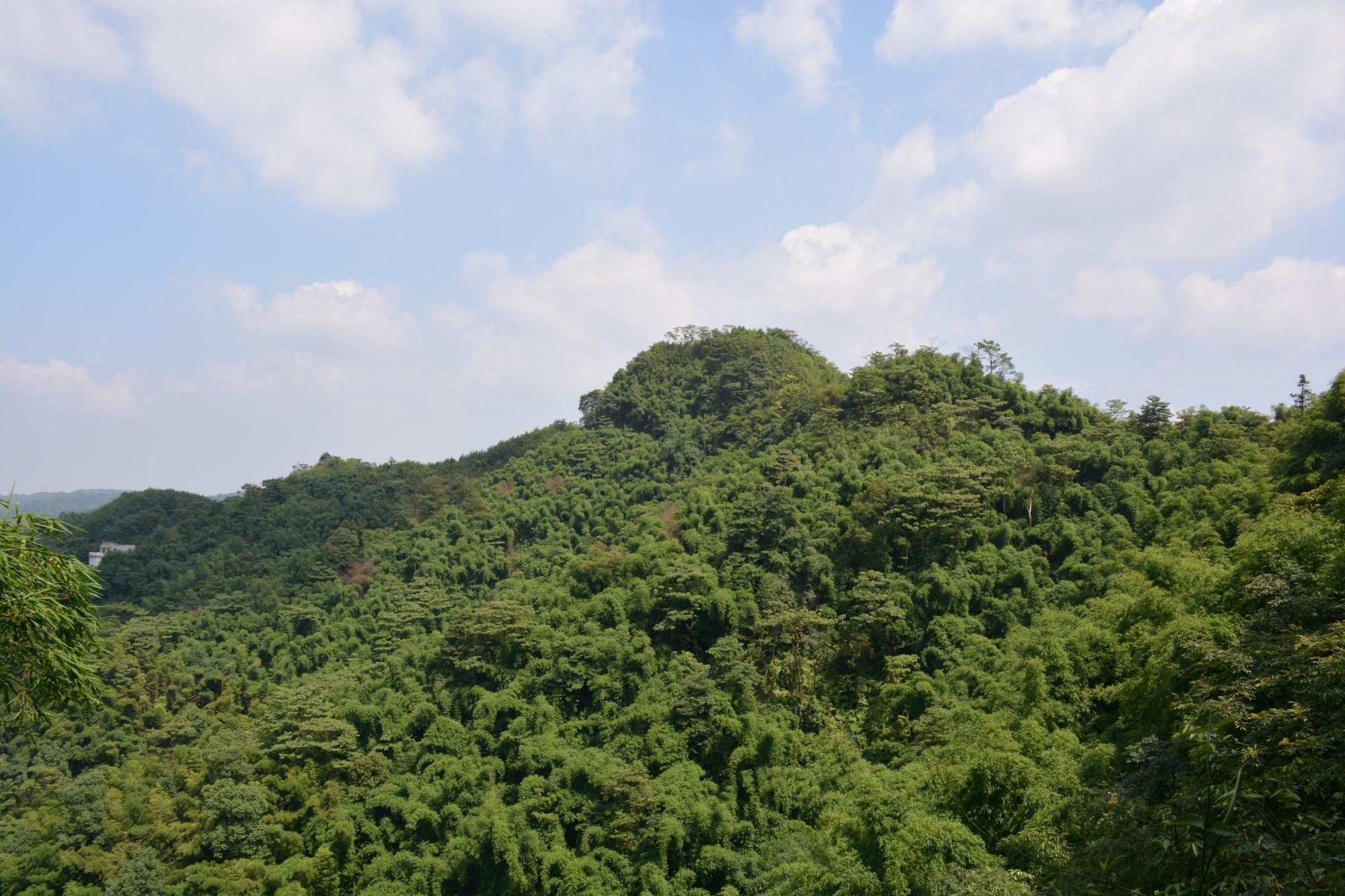 是凤凰湖风景区与花田酒地风景区的最高点,川龙山平均海拔650米,整座