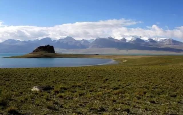 你迷恋西藏的山,西藏的湖,却忘了西藏的草原