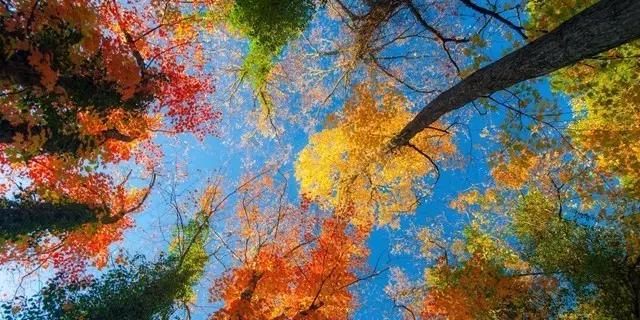 9月旅行目的地推荐,这是国内最适合初秋劫色的六个地方
