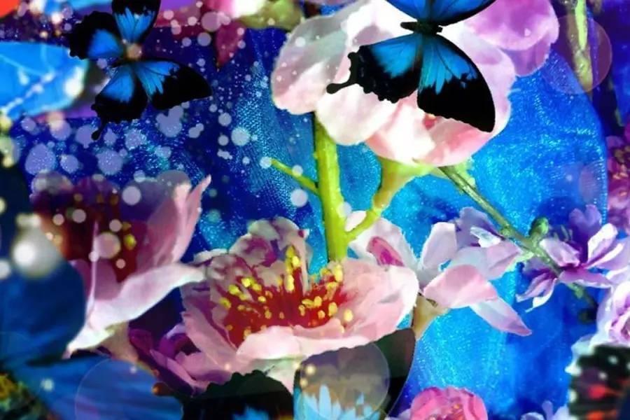 一花一世界后,蜷川实花就要繁华落尽了?