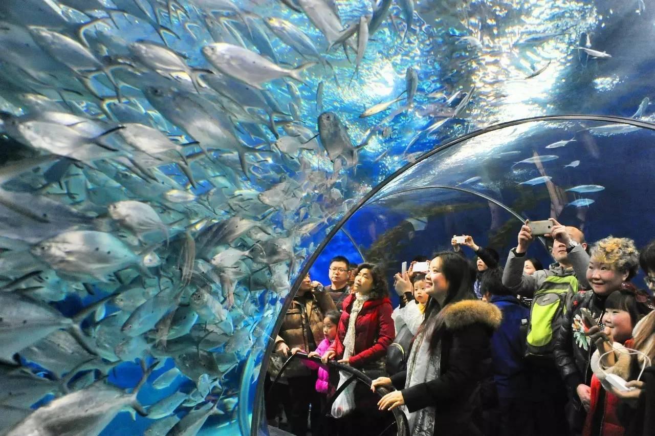 9月10日起,上海旅游节60个景点半价了!最新最全名单奉上