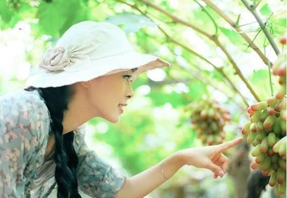 秋天,葡萄的功效堪比冬虫夏草 - wujun700 - wujun700的博客