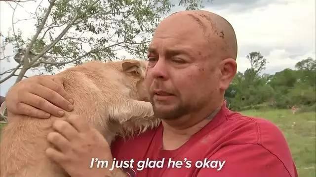 一个纹身的光头男,抱着失而复得的狗,哭得像个小孩子.