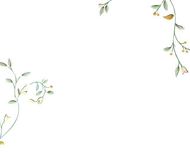 边框简单又漂亮 线条
