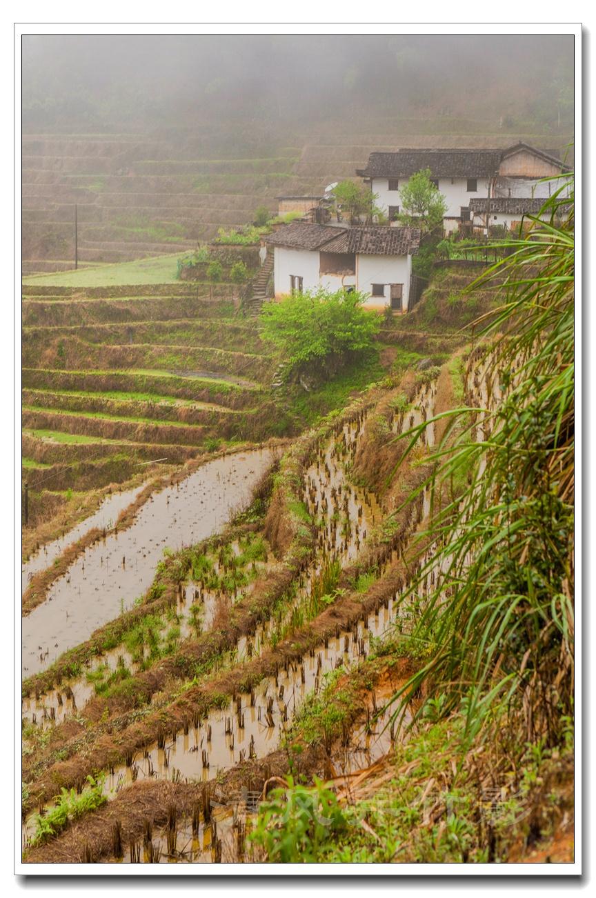 江西上堡梯田之一:雨雾之中看梯田