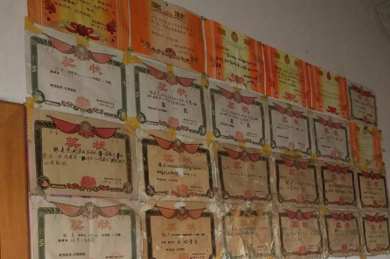 张定杰家贴满奖状的墙图片
