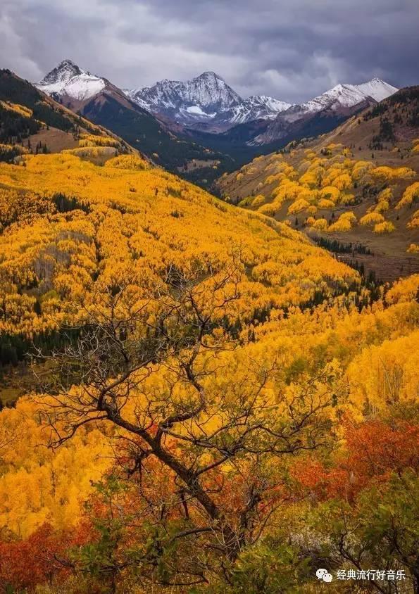9月第一天,一首小提琴曲《金色的秋天》送给亲人,朋友