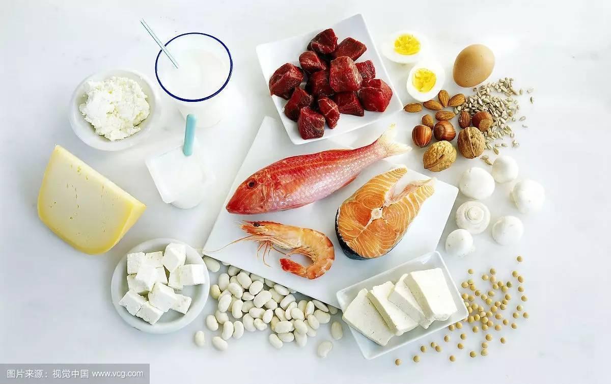 全民健康生活方式宣传周 蛋白质 生命的物质基础