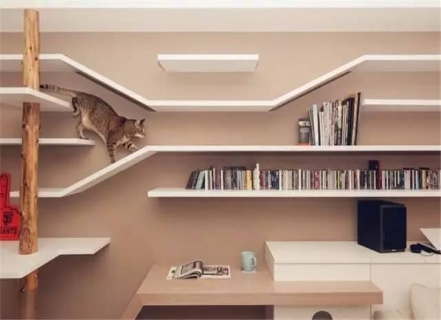 沙发背景墙用细长的木条搭建 cd 架,高低起伏,正好成为猫咪的游乐场!
