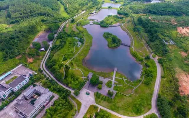 共和生態公園圖片