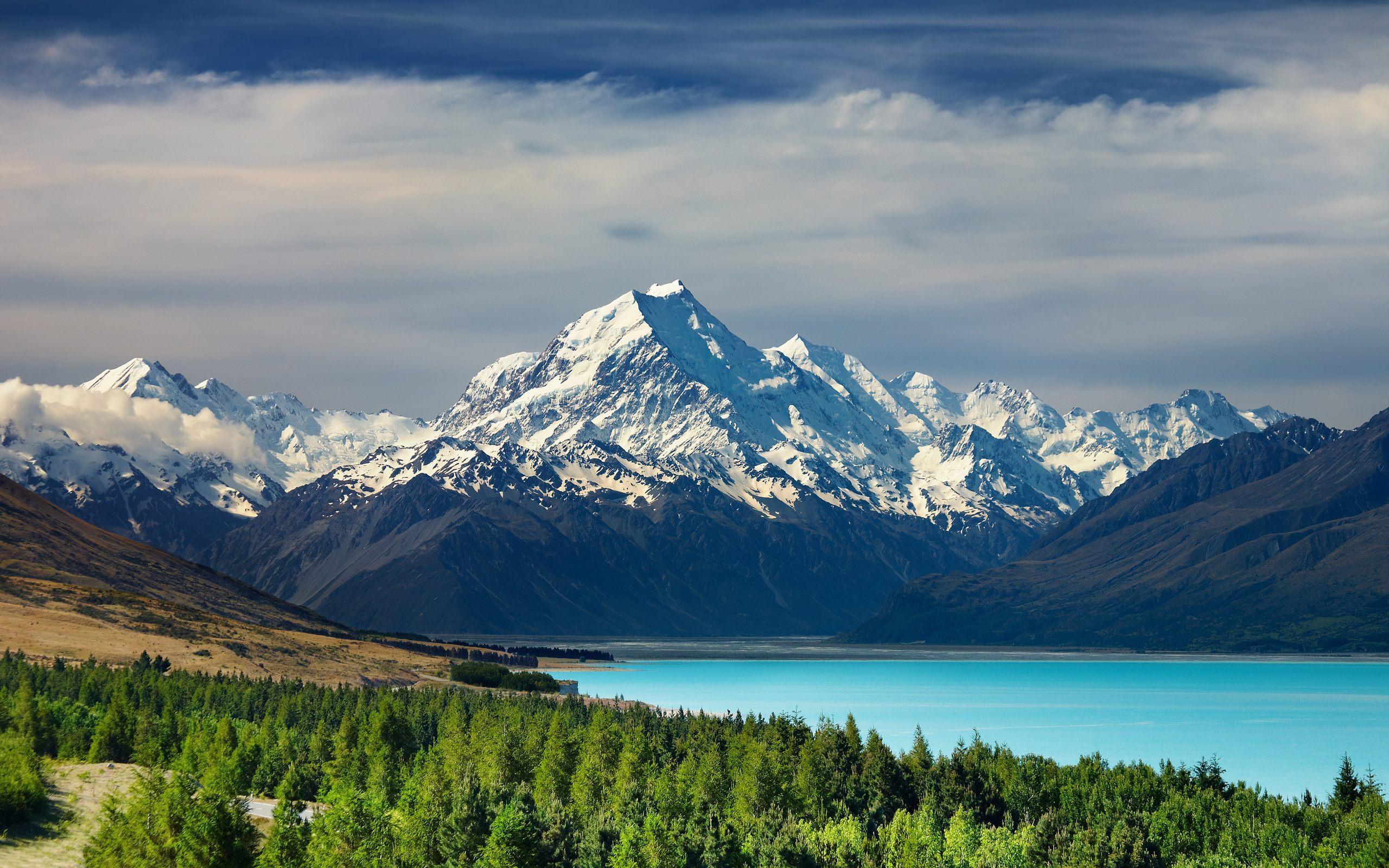 新西兰移民条件|北京新达移民|新西兰移民条件和投资类别图片
