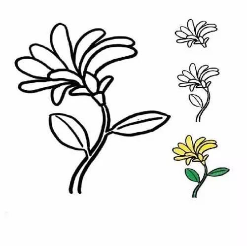 【简笔画】各种植物简笔画大全,可以直接涂色哦!(为孩子收藏)