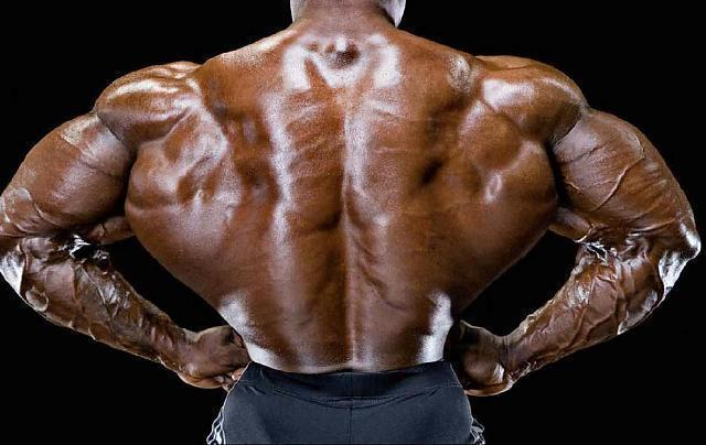 背阔肌_健美大师施瓦辛格和罗尼最喜欢的健身动作,助你练出巨人背阔肌