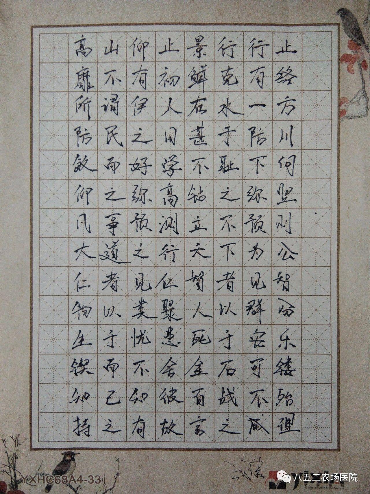 钢笔字                 以下为硬笔书法类优秀作品: 七律长征图片