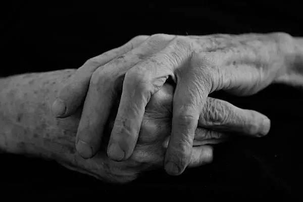 共同生活65年后,这对恩爱的荷兰老夫妻做了一个惊人的决定!