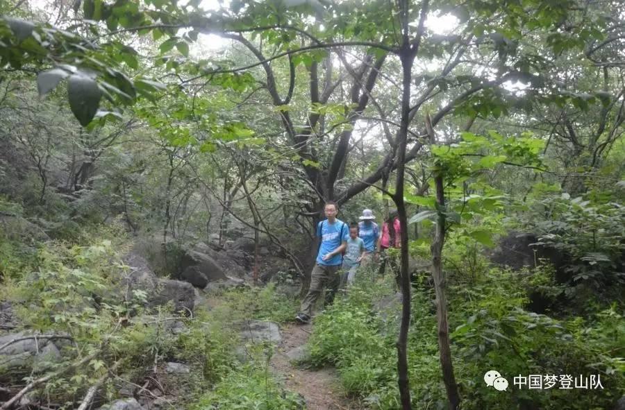 让青山更绿_中国梦登山队第一百六十六环保公益登山活动简报_图文视频版