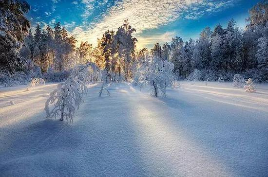 如何拍摄 雪中幻境 雪景拍摄技巧全攻略