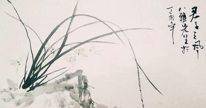 兰纳万境、幽香天地——八雅先生的君子之风图3