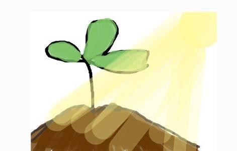 """在""""河青家长会""""公众号为""""班级种子""""浇水,为班级小树苗成长助力.图片"""